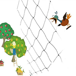 50'x50' Chicken/Bird Netting