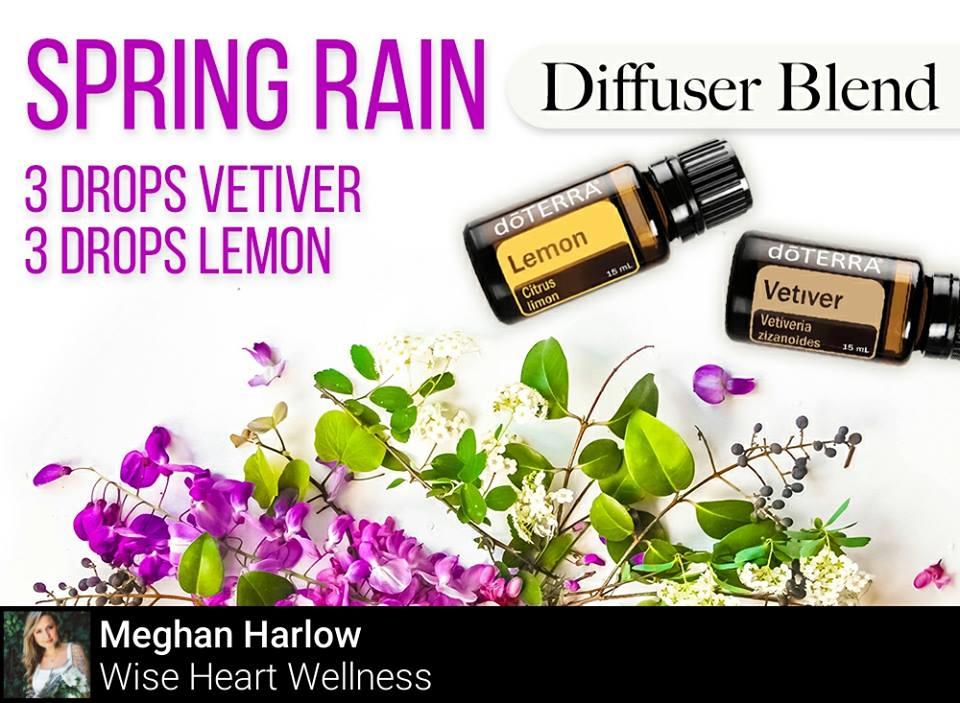 Spring Rain Diffuser Blend