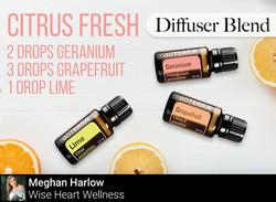 Citrus Fresh Diffuser Blend