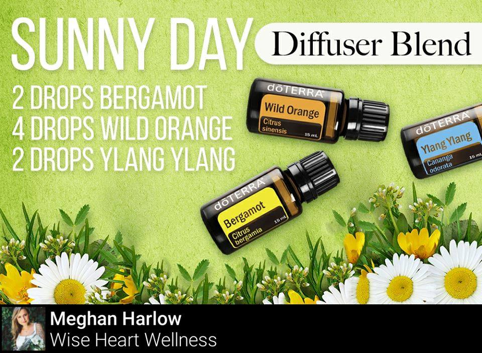 Sunny Day Diffuser Blend
