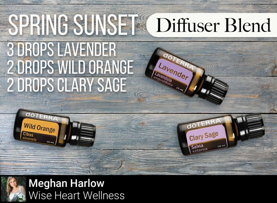 Sunset Spring Diffuser Blend