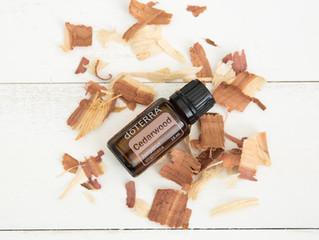 Spotlight on Cedarwood Essential Oil