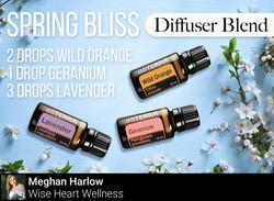 Spring Bliss Diffuser Blend