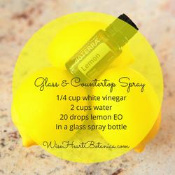 Glass & Counter Spray
