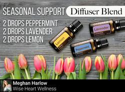 Seasonal Support Diffuser Blend
