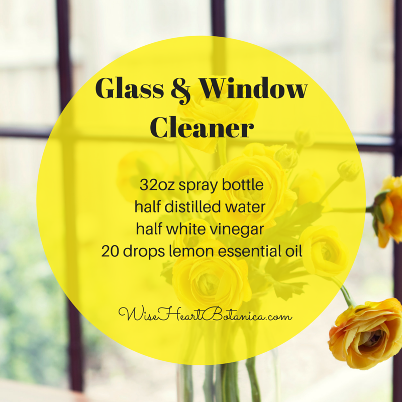 Glass & WindowCleaner