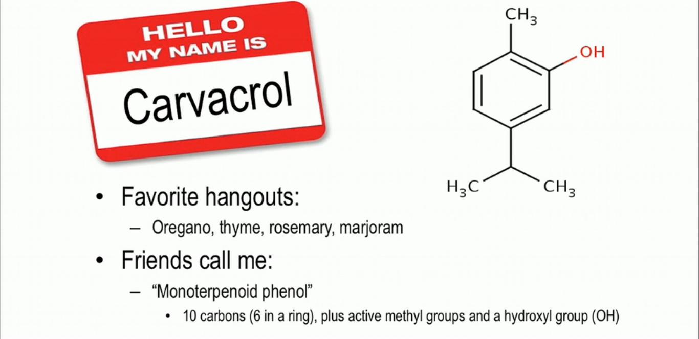 Carvacrol