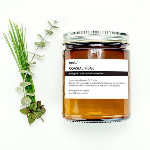Eucalyptus/wild spruce/mint 8 oz candle