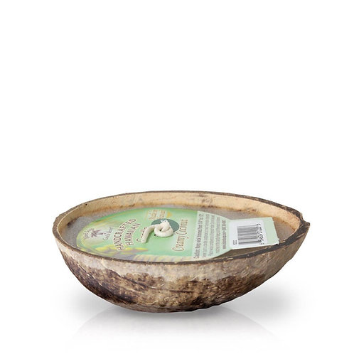 Floating coconut candle