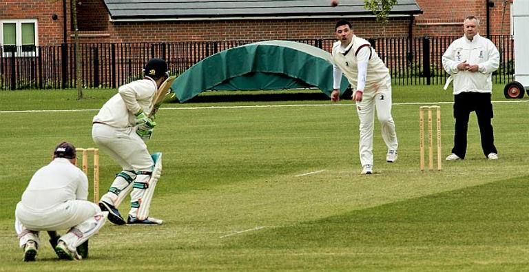 Cricket sml.jpg