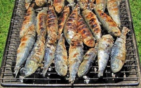 Sardines web.jpg