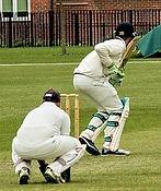 Cricket sml 2.jpg