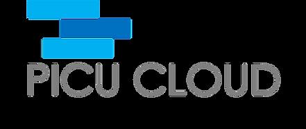PICU CLOUD Logo.png