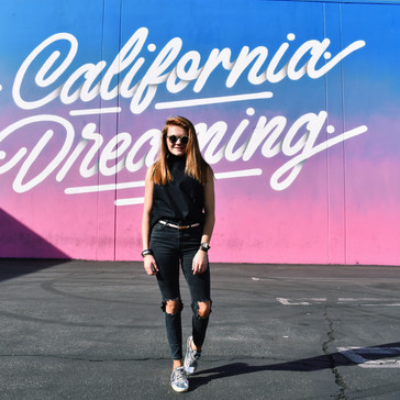 THE L.A. TRAVEL GUIDE