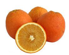 תפוז טבורי ניו הול משתלת מוטשן