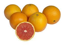 תפוז טבורי קרה-קרה משתלת מוטשן