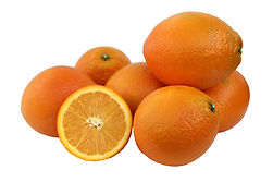 תפוז טבורי ראוסטנברג משתלת מוטשן