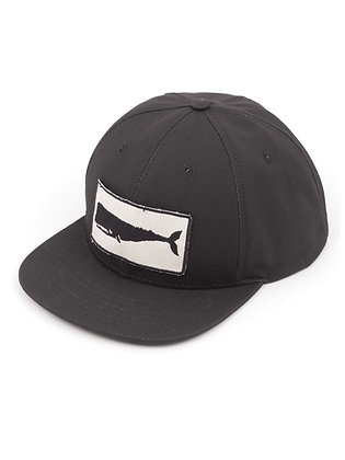 Mollusk Whale Patch Hat - Black