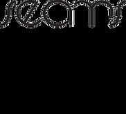 Seams-Intro-Logo.png