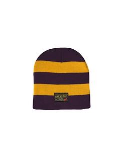 East 4th Skate Stripe Beanie (Purple/Gold)