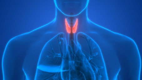 What you need to know about your thyroid labs