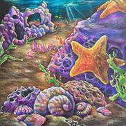 """""""Life Aquatic aka LA Life""""__prismacolor"""