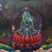 Cannabinoid Gaia