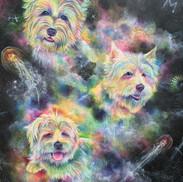 Puppy Power 2