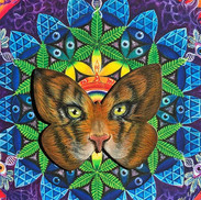 """""""ButterflEYE of the Tiger""""_5in x 7in but"""