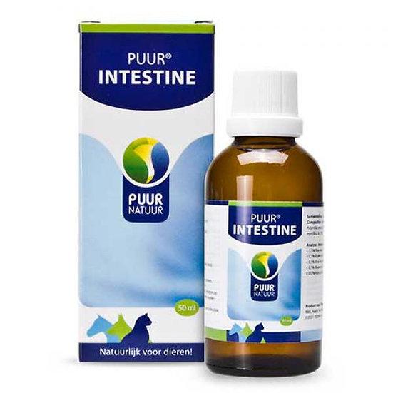 PUUR Intestine 50ml / Darm
