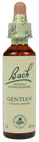 Bach Gentian 20ml