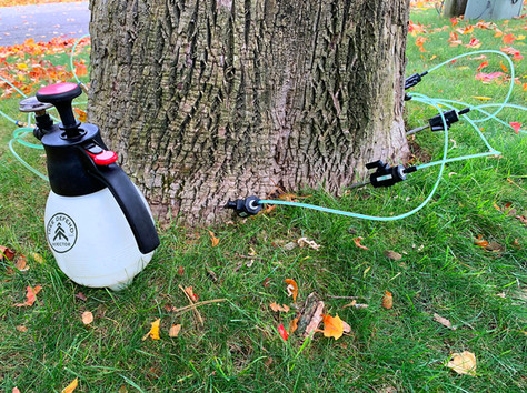 Tree Defend Hookup with Poly/Viton Valves