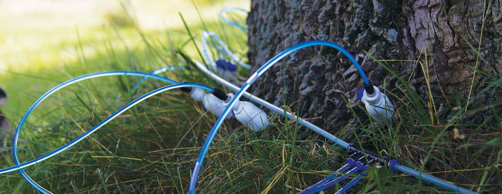 Tree Defend Injector Treatment