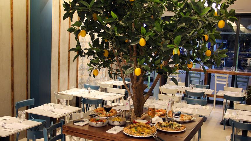 lemon_tree_table.jpg