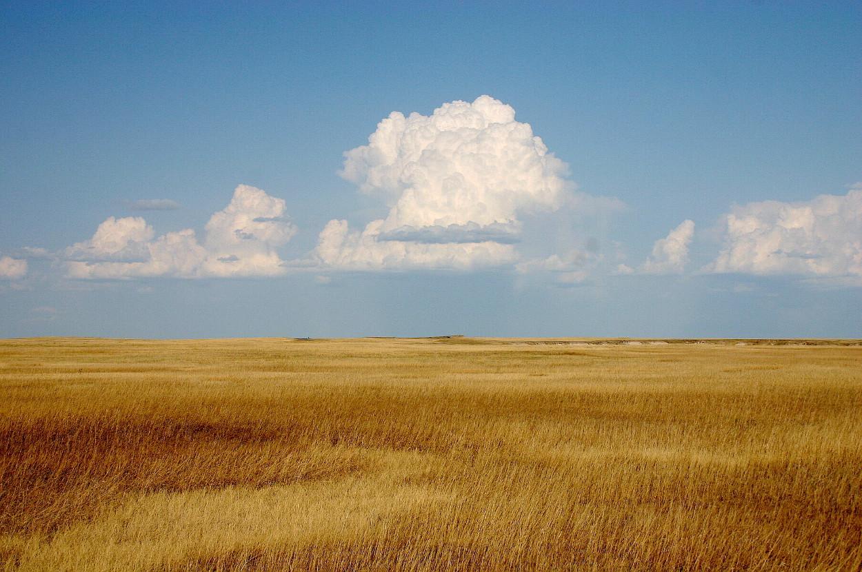Cumulus_Clouds_over_Yellow_Prairie2_1250