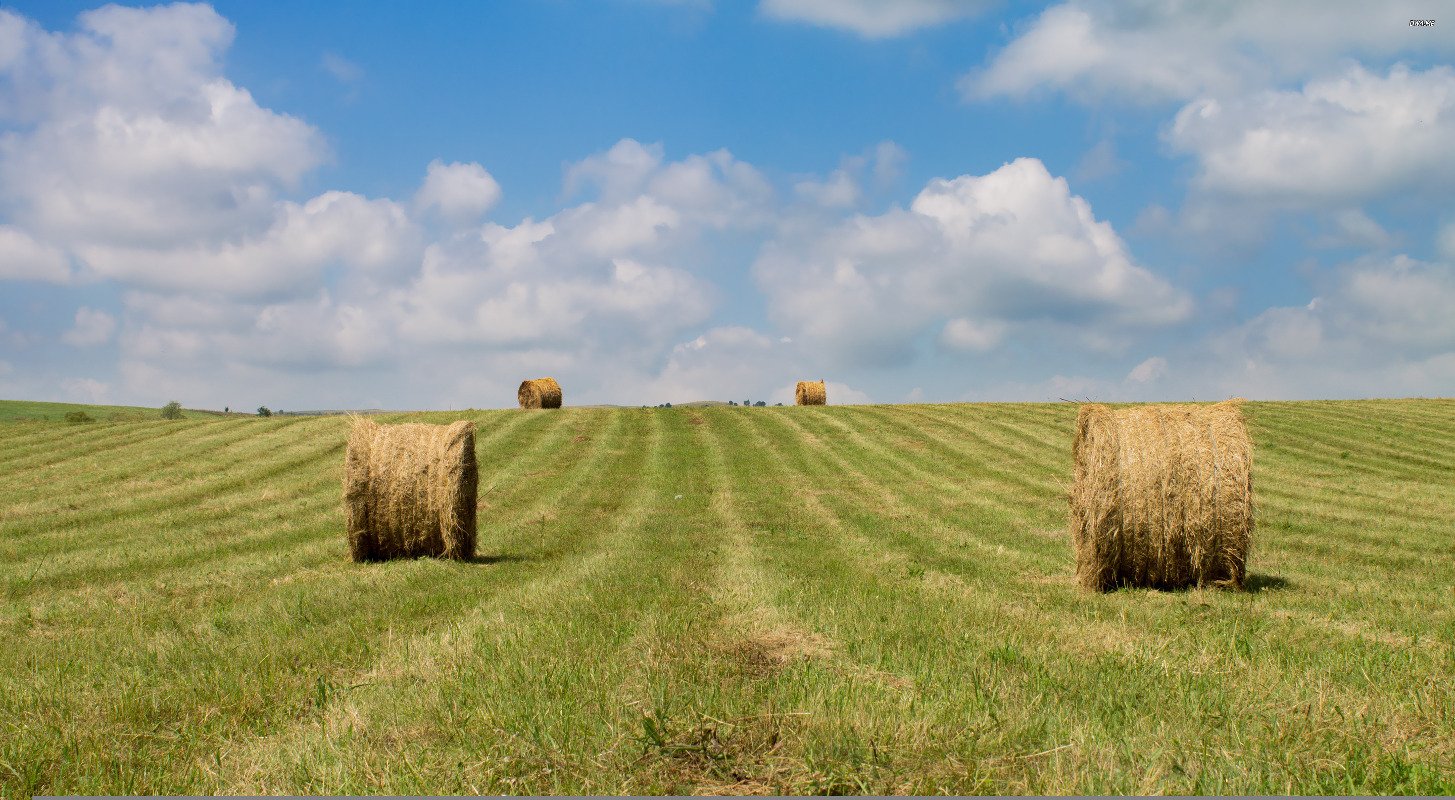 2398-hay-bales-after-the-harvest-2880x18