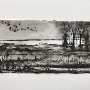Landscape with murmuration