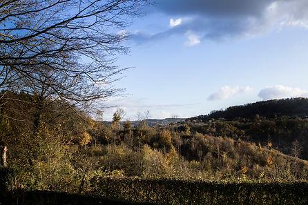 kabane7 the vieuw , la vue, l'Ardenne
