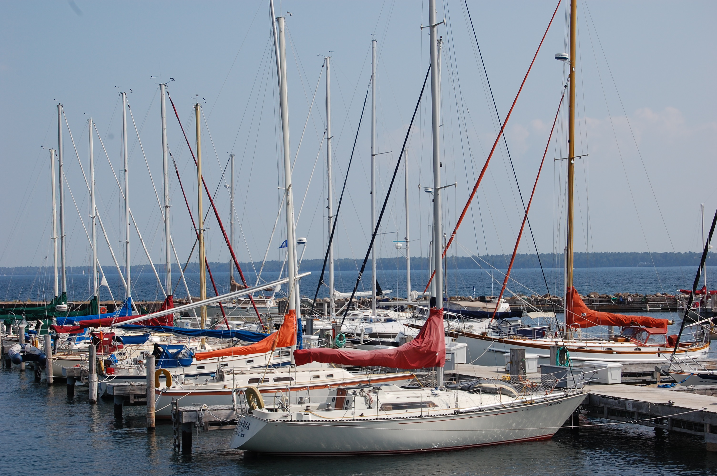 sailboats docked