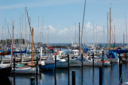 Sailboats docked 2