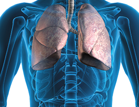 mr lungs-crop-u63899.png
