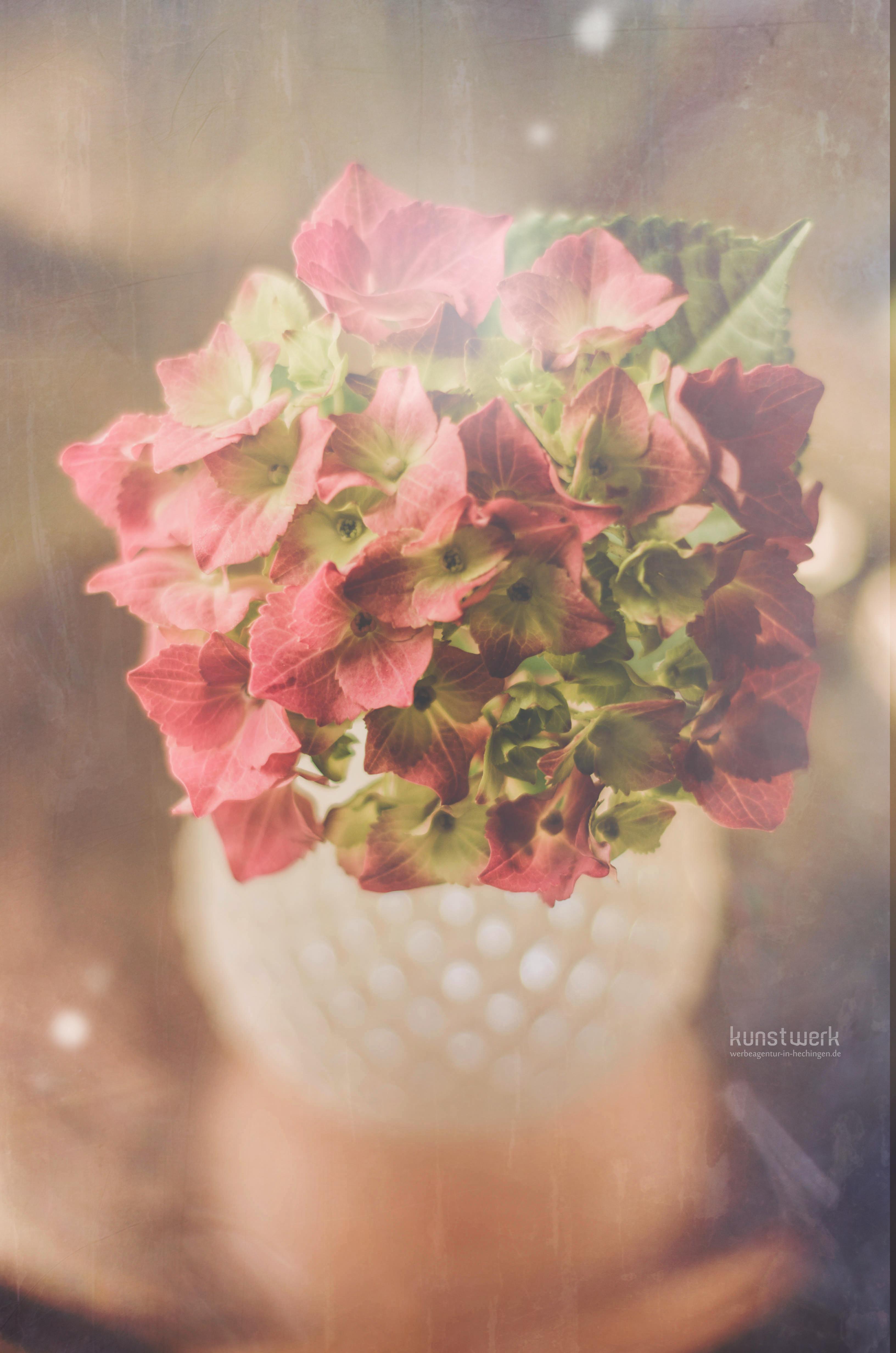 Intime Blüten 5