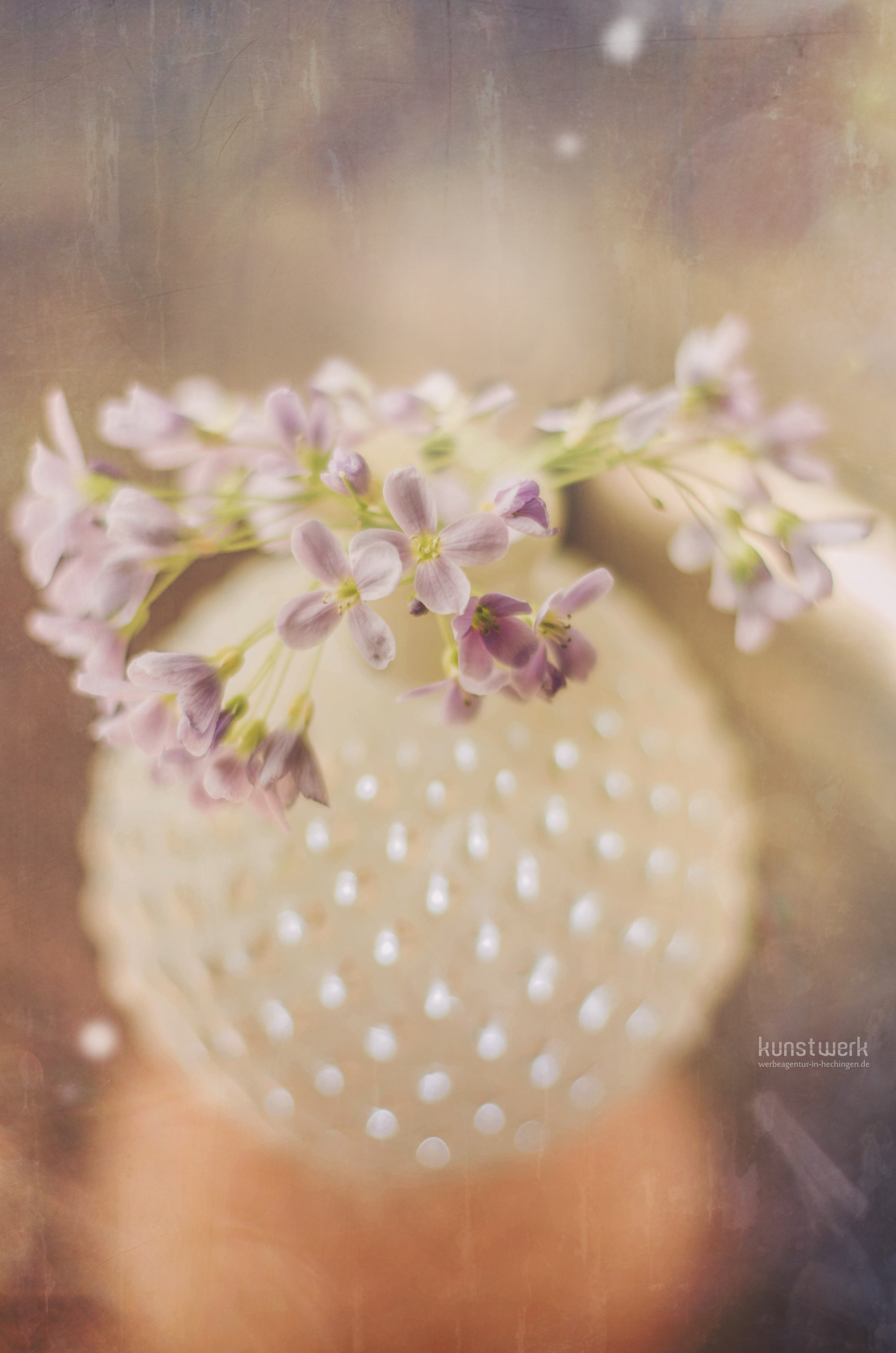 Intime Blüten 4