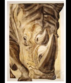 Nashorn, Aquarell auf Büttenpapier