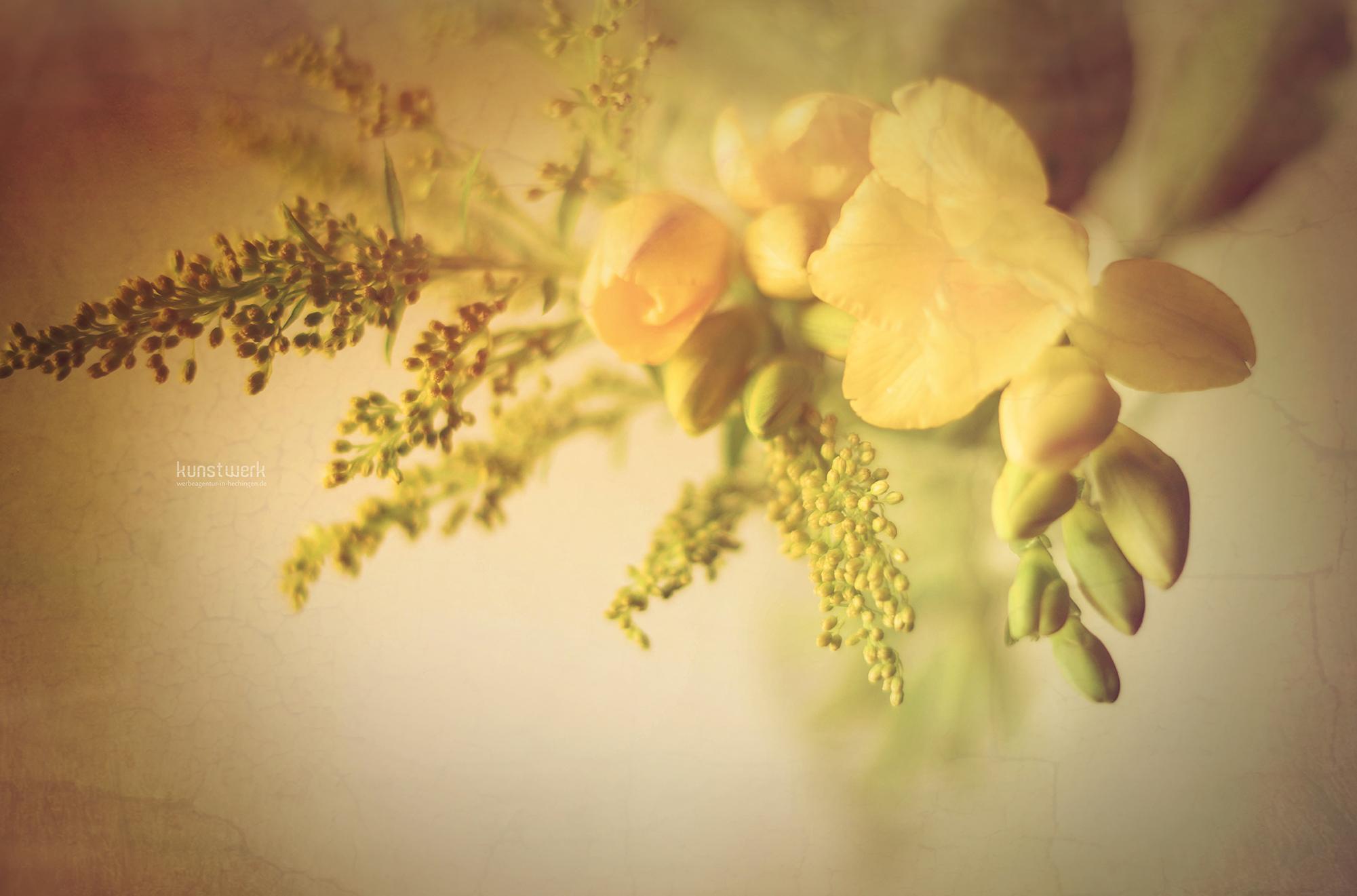 Intime Blüten 2