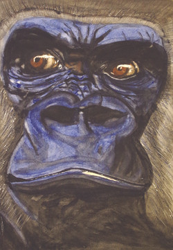 Gorilla, Aquarell auf Büttenpapier