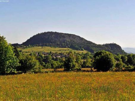 Du 15 au 18 Juillet : Monts du Velay, monts d'Ardèche et Gorges de la  Loire