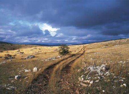 Du 21 au 29 Octobre : Voyage itinérant entre Mont Lozère, Cévennes, Mont Aigoual & Causses