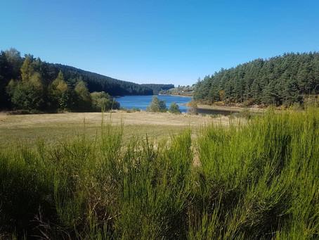 Dimanche 3 Avril : Monts du Pilat: Lac & Crêt de Chaussitre