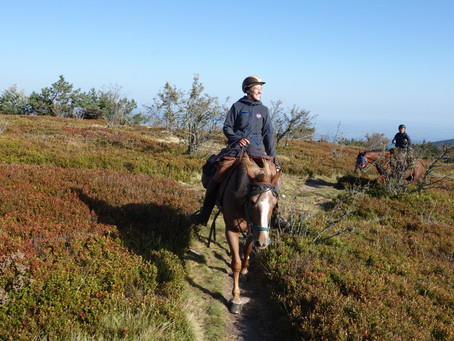 Jeudi 31 Mars : Escapade Mont du Pilat- Crêts de la Perdrix